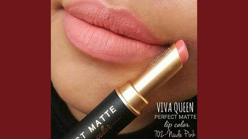 Warna Lipstik Viva Perfect Matte - 702 Nude Pink